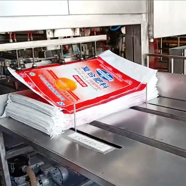 SW-ABF Fully Automatic Bagging Machine